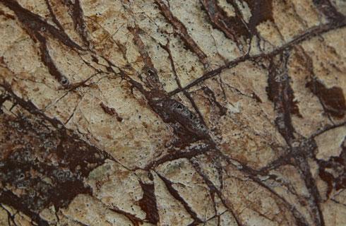 Marmor: der Naturstein für einen Hauch Luxus